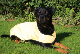 Prestige Pet Products UK - Cool Coat